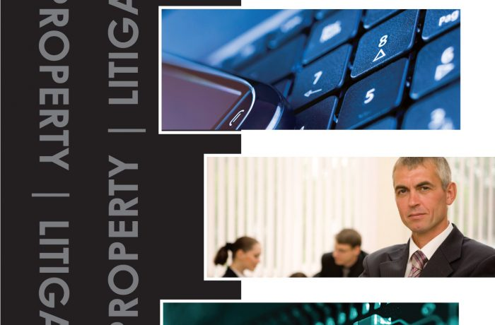 Marketing Collateral – IP/LS Brochure